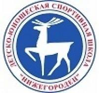 Бассейн Нижегородец в Нижнем Новгороде